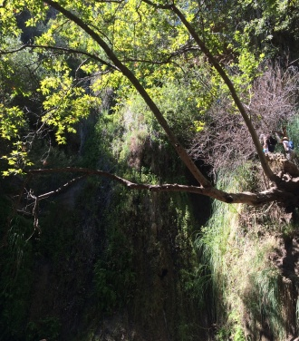 Weekend Recap Escondido Falls